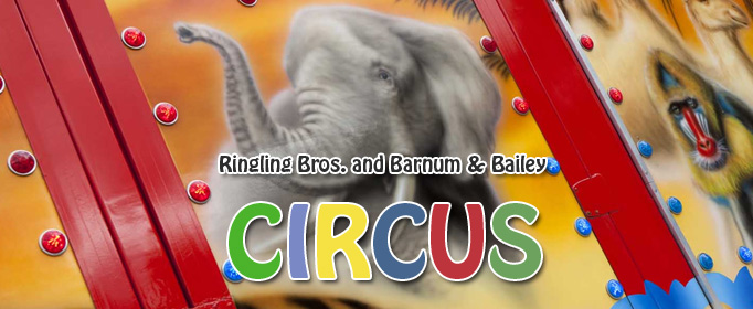 Ringling Bros. and Barnum & Bailey Ci